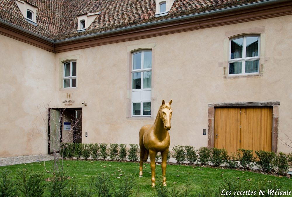 La brasserie Les Haras à Strasbourg