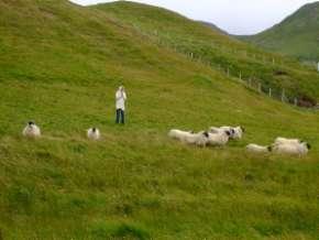L'Ecosse en camping-car en itinérant : région d'Edimburgh 70
