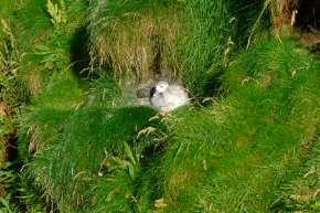 L'Ecosse en camping-car en itinérant : région d'Edimburgh 166
