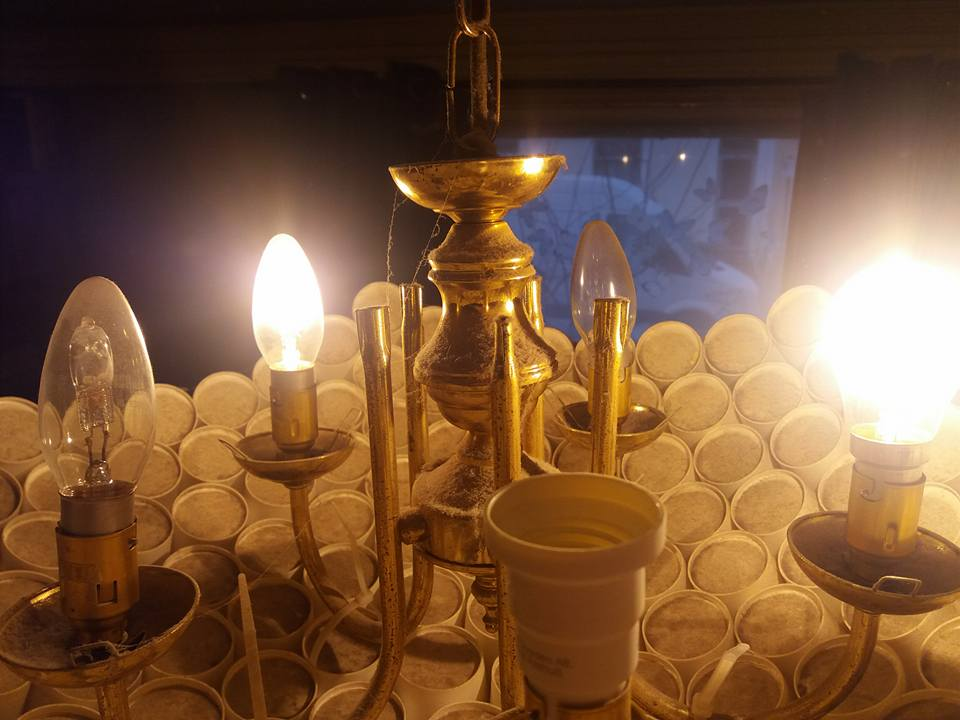 Ikea Live Lagom Lightbulbs replaced with LEDS