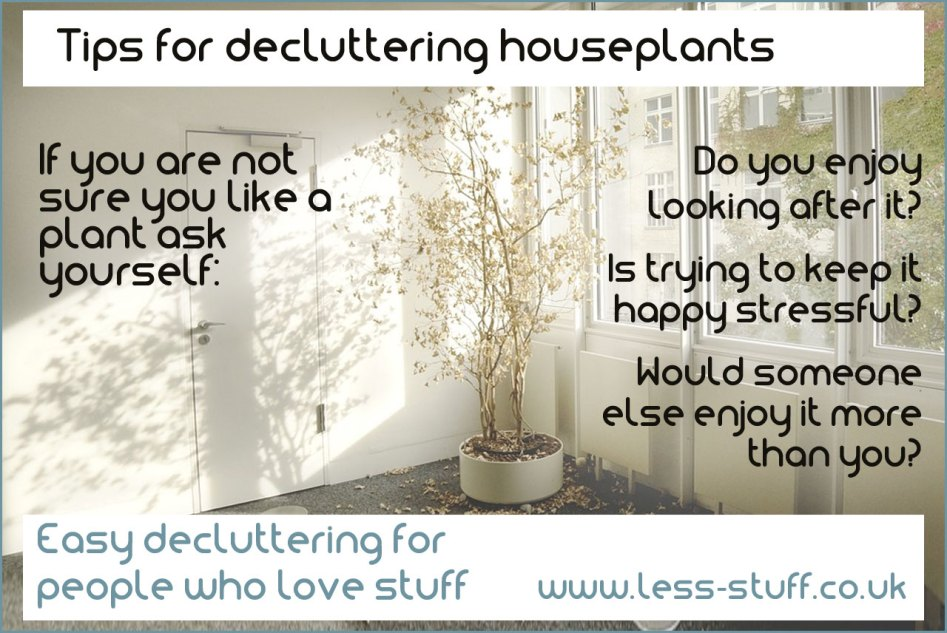 decluttering houseplants