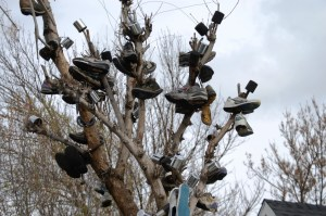 """Shoe Tree"" in Talent, OR"