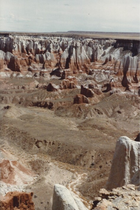 Another view of Coal Mine Canyon, AZ in 1983