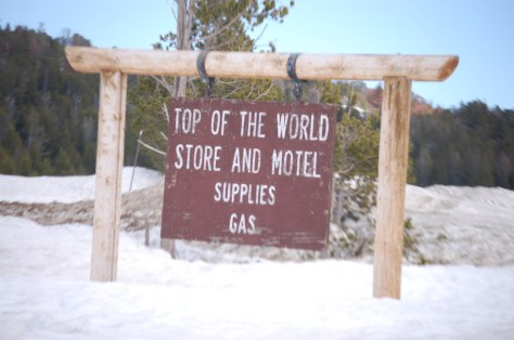 Welcome to Top of the World Store