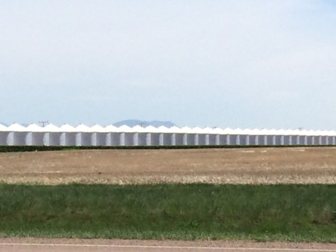 A line of grain silos in Kremlin, MT