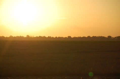 Sunset in the Delta of Mississippi