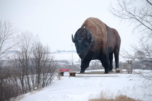 World's Largest Buffalo, Jamestown, ND