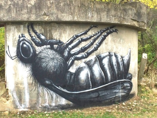 Bee on its back by ROA, located in the Lexington Distillery District