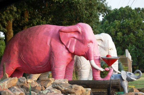 Martini bearing pink and white elephant pair at Hipp Nursery in Haubstadt, IN