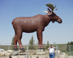 Mac the Moose in Moose Jaw, Saskatchewan