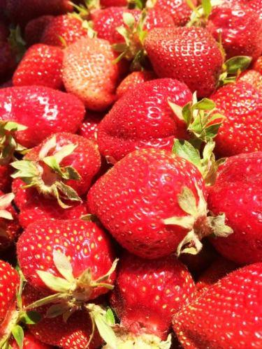 California Strawberries!