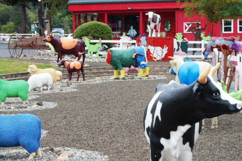 """The Mattress Ranch """"pasture"""" in Port Orchard"""