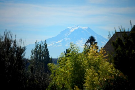 Mt. Rainier as seen from the Point Defiance Zoo