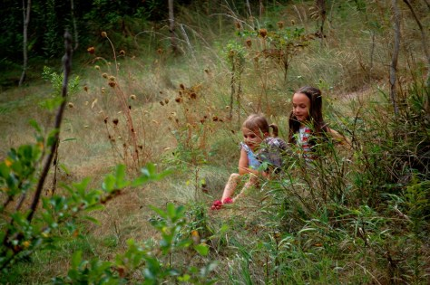 Lyla and Joselyn climbing around on a hill at the South Mountain Rest Area in maryland