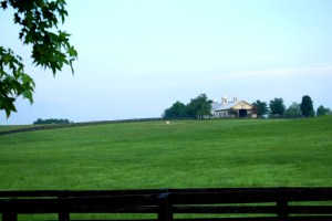 One of many amazing Horse Farm barns that can be seen in the Versailles area