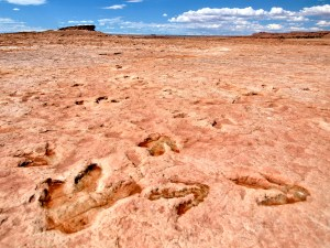 Moenave Dinosaur Tracks near Tuba City, AZ