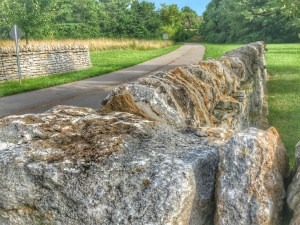 One of the scenes of Lexington's Legacy Trail including the iconic stone walls that line the entire Bluegrass area.