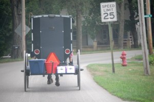 "An Amish buggy ""speeds"" along a road near Fredericksburg, OH"