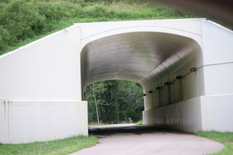 Mohican Valley Trail tunnel at the Brinkhaven trailhead