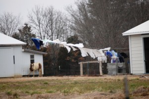 Amish Laundry hanging to dry - Crab Orchard, KY