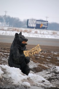 Floyd Bear