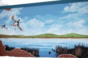 Wall Mural in Avon, MN
