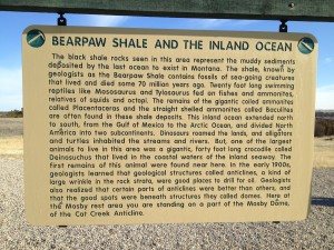 Bearpaw Shale Historical Marker at Mosby Rest Area