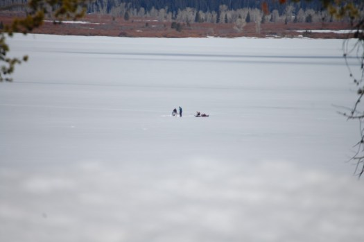 Ice Fishing on Jackson Lake - the little dots