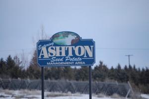 Welcome to Ashton