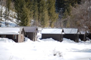 Snow Covered Cabins