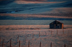 Snow covered prairies north of Browning, Montana