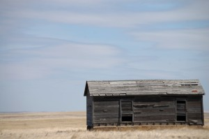 Old Wooden Homestead east of Shelby, MT