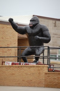 Gregory - Home of the Gorillas