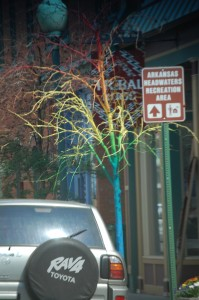 Strange colored tree in Salida
