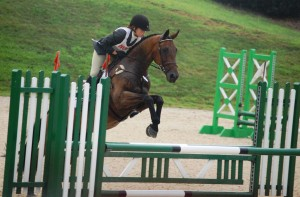 Show Jumping at Kentucky Horse Park