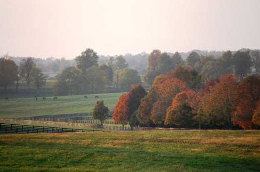 Horse Country - Lexington, Kentucky