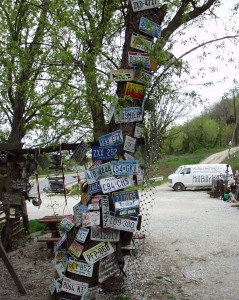 License Plate Tree at Hillbilly Hot Dogs