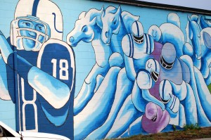 Indianapolis Colts Wall Mural