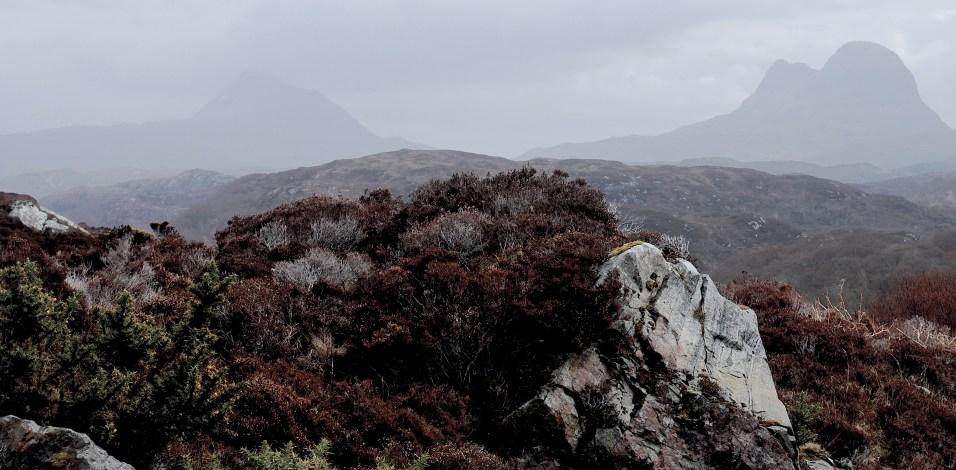 wild heathland