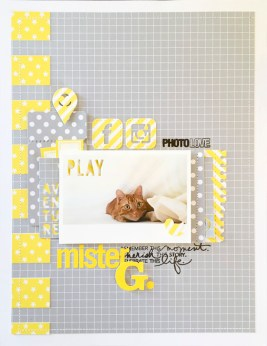 MisterG