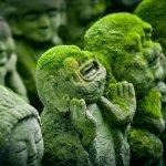 zen soyons zen lessentiel des parents