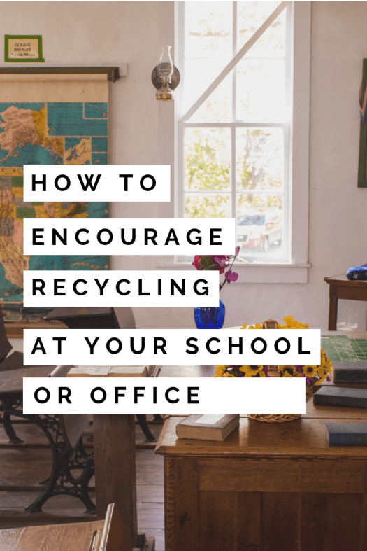 Encourage recycling at your school or office pin.