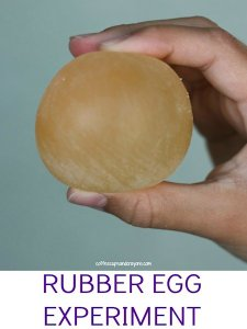 Rubber Egg Experiment