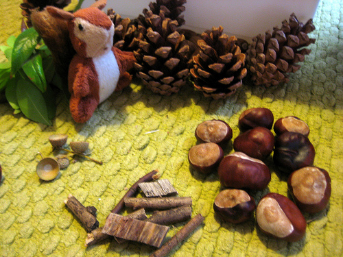 Autumn Sensory Tub with Squirrels