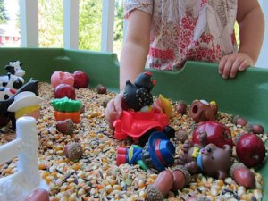 Fall Farm Sensory Tub