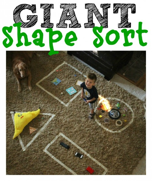 Giant Shape Sort