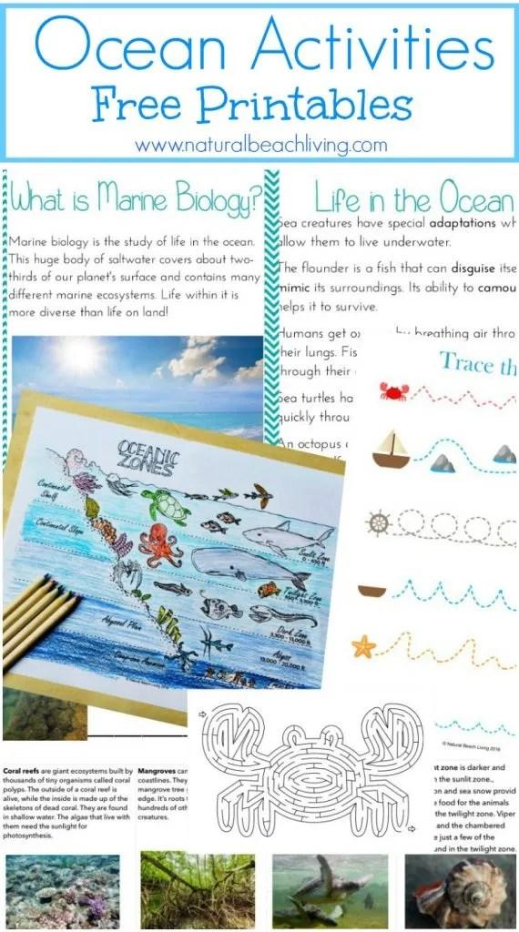 Ocean/Marine biology unit study ideas
