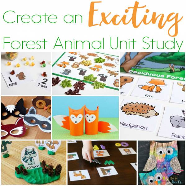 Forest animal unit study ideas.