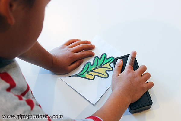 leaf changing color learing activity