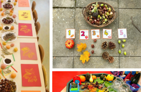 Using Natural Objects in the Fall Classroom